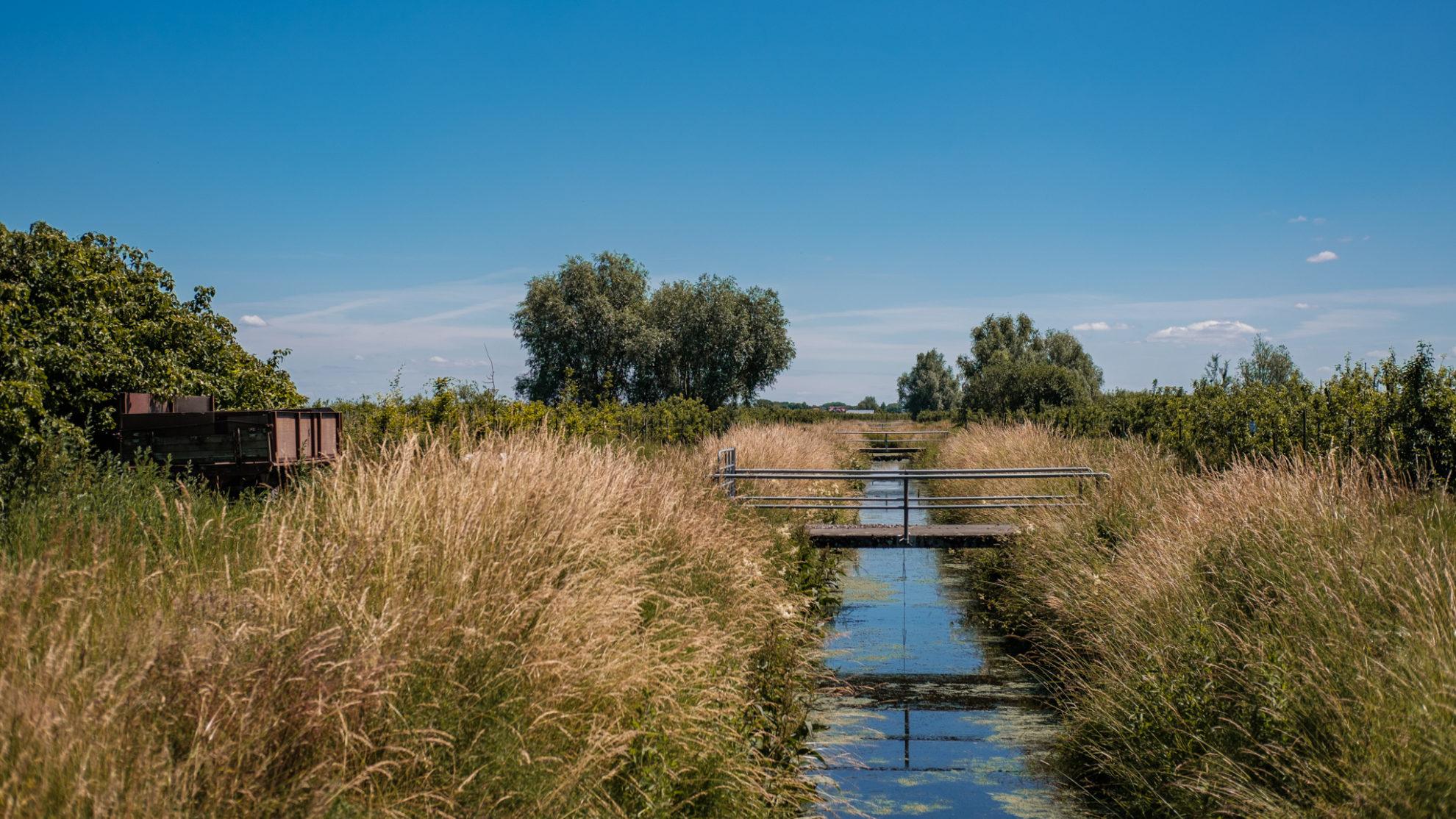 Ein kleiner Entwüsserungskanal mit einer kleinen Brücke im Vordergrund. Am Rand wachsen hohe Gräser. Links im Bild steht ein alter Anhänger.