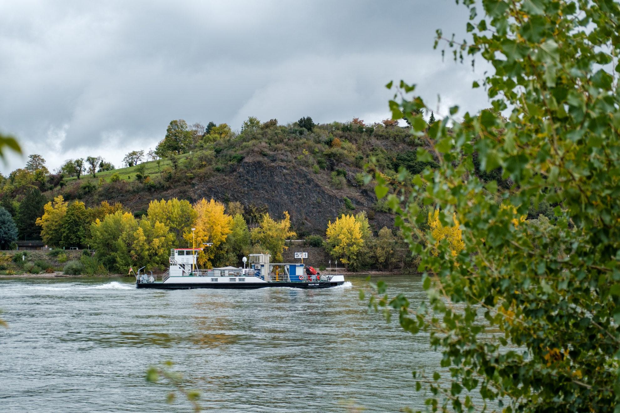 Ein Messschiff auf dem Rhein, im Hintergrund sind herbstlich gelb gefärbte Bäume.