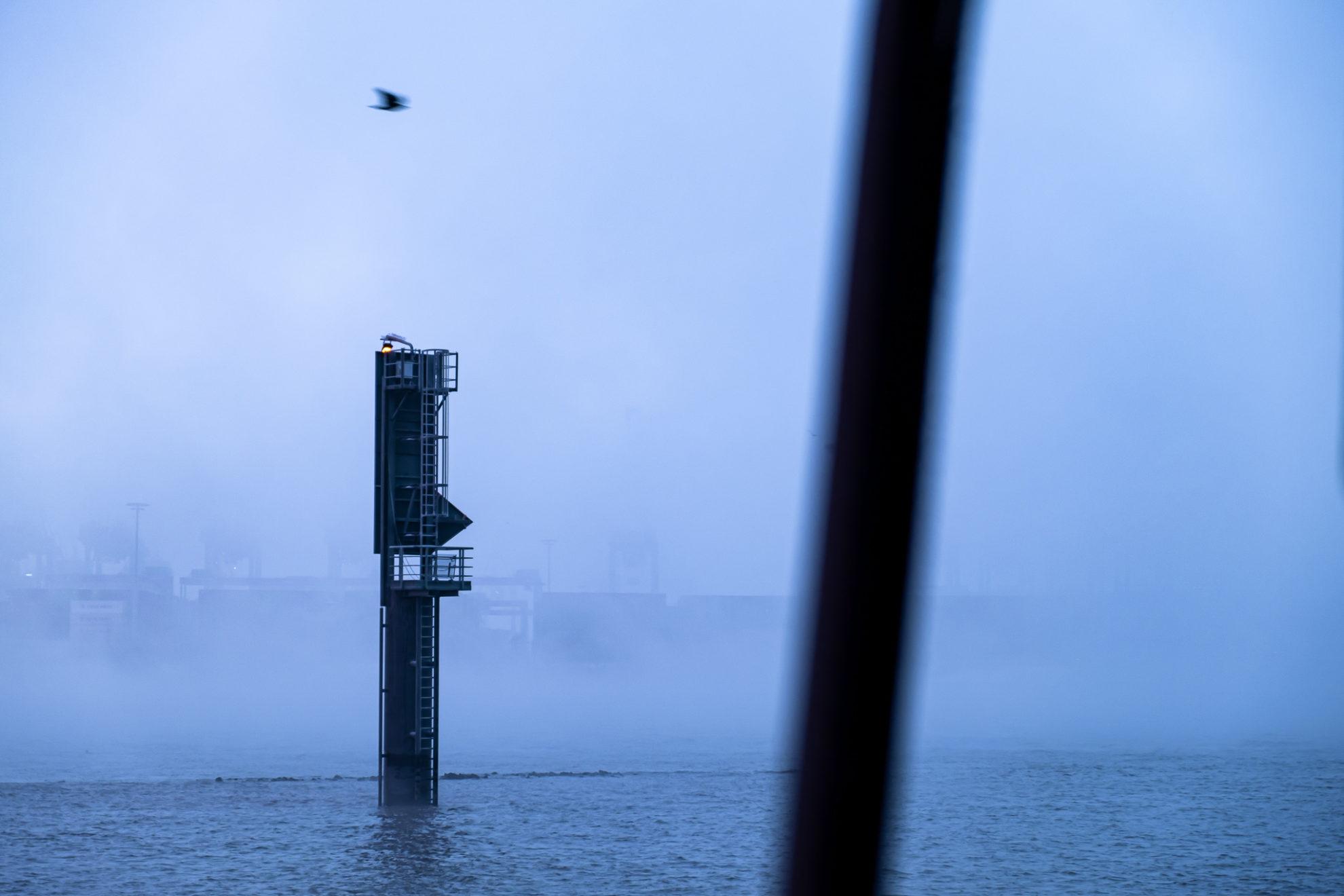 Nebel schwebt über dem Wasser der Elbe. Ein Vogel fliegt über einen Pfahl im Wasser. Im Vordergrund ist ein schwarzer unscharfer Balken quer im Bild.